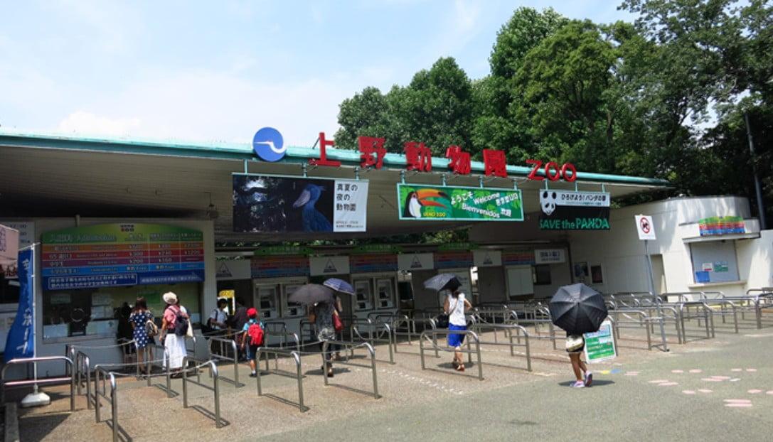 上野動物園(上野駅)から浅草寺(浅草駅)までのアクセス・行き方「電車・バス・タクシー・徒歩」